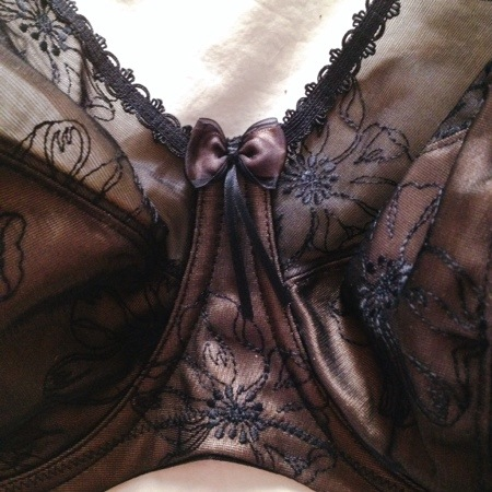 """""""Imogen"""" Full-Cup Bra, Brief, and Waist Cincher by Elomi.  Review at sweetnothingsnyc.com"""