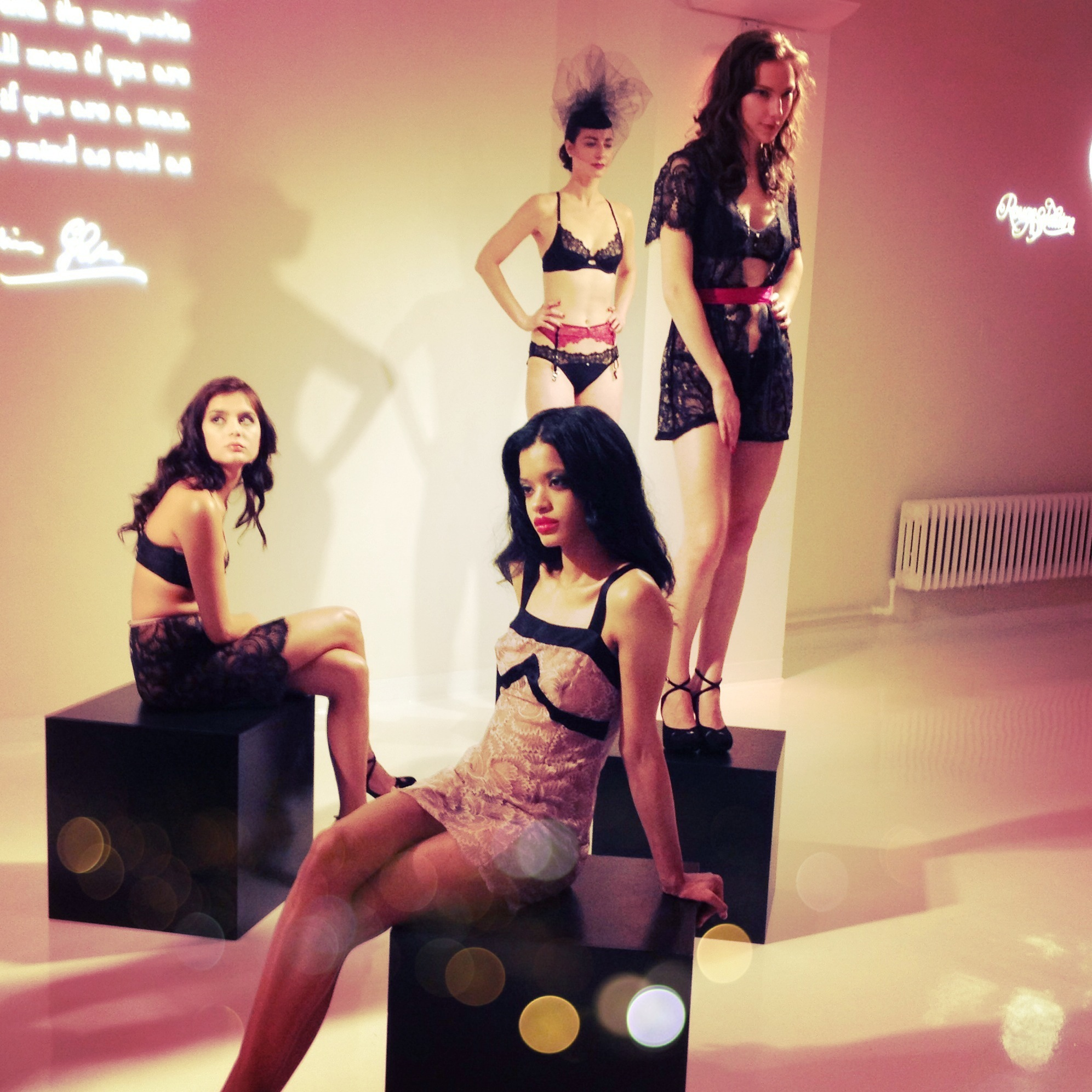 """Obsession"" Fall/Winter 2013 Presentation at Lingerie Fashion Week"